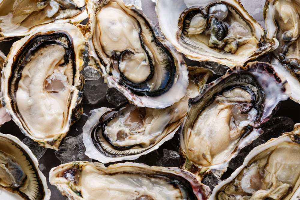 Best Oysters In Orlando