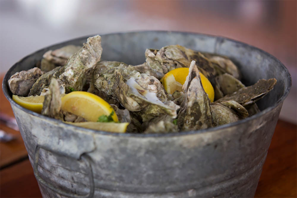 How Many Oysters Are There In A Bushel