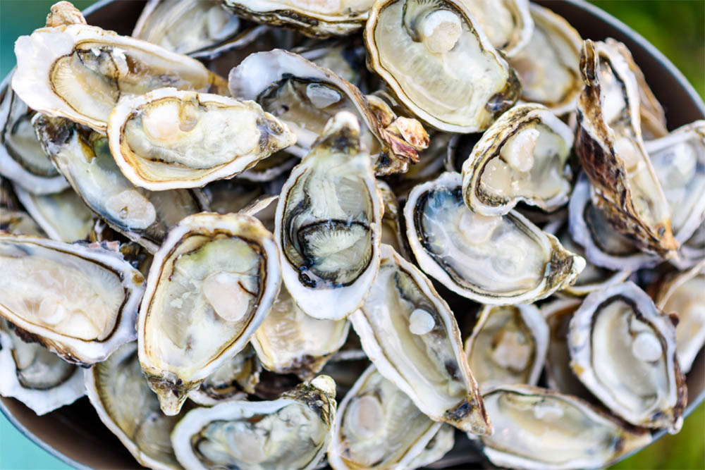 Oysters Are There In A Bushel