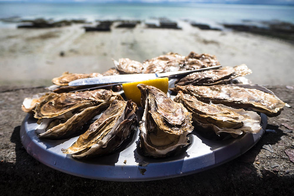 Best Oysters In Galveston