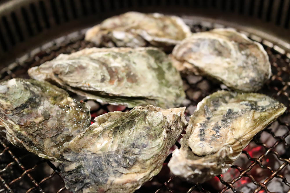 How To Cook Oyster