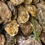 Where To Buy Oysters